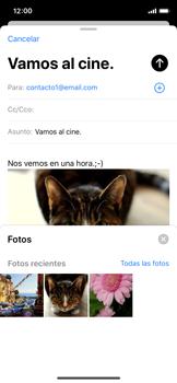 Cómo enviar un correo electrónico - Apple iPhone XS - Passo 15