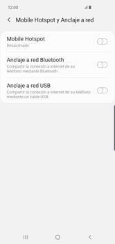 Comparte la conexión de datos con una PC - Samsung S10+ - Passo 8