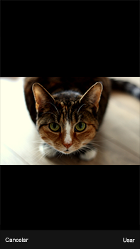 Envía fotos, videos y audio por mensaje de texto - Apple iPhone 7 Plus - Passo 13