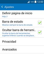 Configura el Internet - Samsung Galaxy J1 - J100 - Passo 24