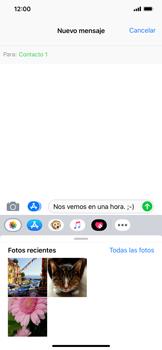 Envía fotos, videos y audio por mensaje de texto - Apple iPhone XR - Passo 9
