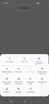 Configura el Internet - Samsung S10+ - Passo 24