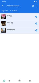 Transferir datos desde la tarjeta SD a tu dispositivo - Motorola Moto G8 Play (Single SIM) - Passo 7