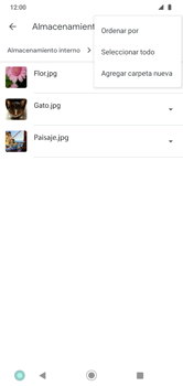 Transferir datos desde tu dispositivo a la tarjeta SD - Motorola Moto G8 Play (Single SIM) - Passo 6