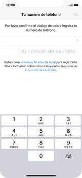 Configuración de Whatsapp - Apple iPhone 11 Pro - Passo 6
