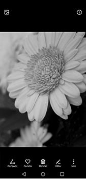 Función de fotografía monocroma - Huawei P20 Pro - Passo 6