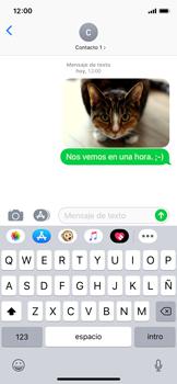 Envía fotos, videos y audio por mensaje de texto - Apple iPhone XS - Passo 13
