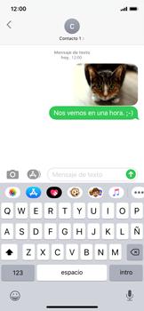 Envía fotos, videos y audio por mensaje de texto - Apple iPhone XS - Passo 15