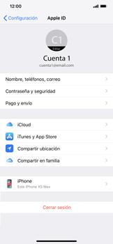 Realiza una copia de seguridad con tu cuenta - Apple iPhone XR - Passo 8