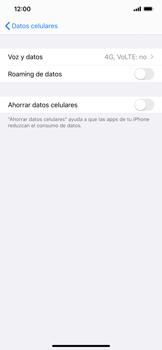 Configurar el equipo para navegar en modo de red LTE - Apple iPhone 11 - Passo 4