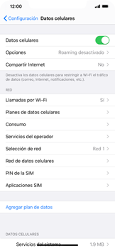 Activa o desactiva el roaming de datos - Apple iPhone 11 - Passo 4