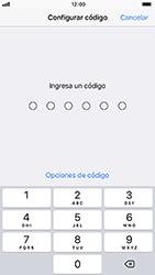 Activa o desactiva el uso del código de seguridad - Apple iPhone 8 - Passo 4