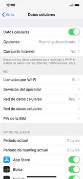 Configurar el equipo para navegar en modo de red LTE - Apple iPhone XS - Passo 3