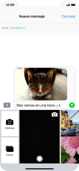 Envía fotos, videos y audio por mensaje de texto - Apple iPhone X - Passo 14