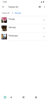 Transferir datos desde la tarjeta SD a tu dispositivo - Motorola Moto G8 Play (Single SIM) - Passo 5