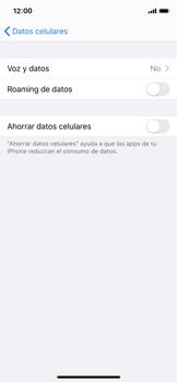 Configurar el equipo para navegar en modo de red LTE - Apple iPhone XS - Passo 4