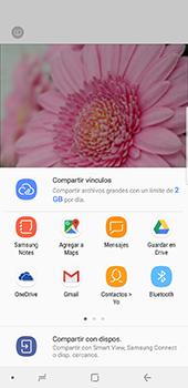 Opciones de la cámara - Samsung Galaxy Note 8 - Passo 17