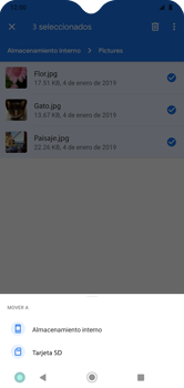 Transferir datos desde tu dispositivo a la tarjeta SD - Motorola Moto G8 Play (Single SIM) - Passo 9