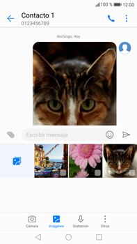 Envía fotos, videos y audio por mensaje de texto - Huawei Mate 9 - Passo 18