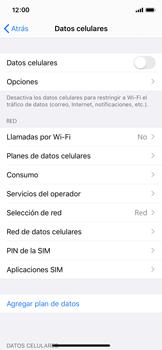 Desactiva tu conexión de datos - Apple iPhone XS - Passo 4