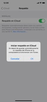 Realiza una copia de seguridad con tu cuenta - Apple iPhone 11 Pro - Passo 11