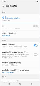 Configura el Internet - Samsung Galaxy A10 - Passo 6