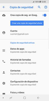 Realiza una copia de seguridad con tu cuenta - Samsung Galaxy S9 - Passo 11