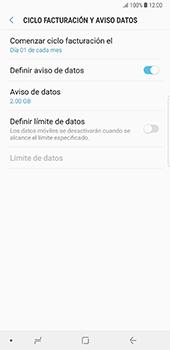Desactivación límite de datos móviles - Samsung Galaxy Note 8 - Passo 9