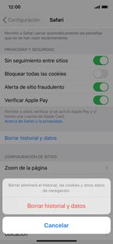 Limpieza de explorador - Apple iPhone XS - Passo 5
