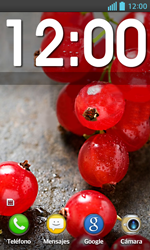 Bloqueo de la pantalla - LG Optimus L5 II - Passo 4