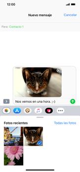 Envía fotos, videos y audio por mensaje de texto - Apple iPhone XR - Passo 13