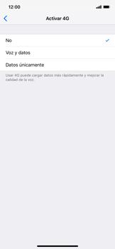 Configurar el equipo para navegar en modo de red LTE - Apple iPhone XS Max - Passo 5
