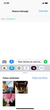 Envía fotos, videos y audio por mensaje de texto - Apple iPhone XS - Passo 8