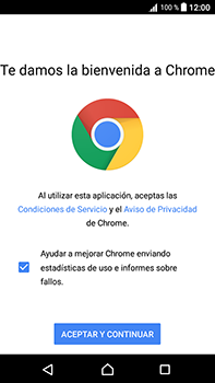 Configura el Internet - Sony Xperia L1 - Passo 21