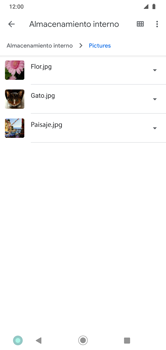 Transferir datos desde tu dispositivo a la tarjeta SD - Motorola Moto G8 Play (Single SIM) - Passo 5