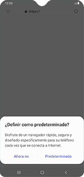 Configura el Internet - Samsung Galaxy A10 - Passo 22