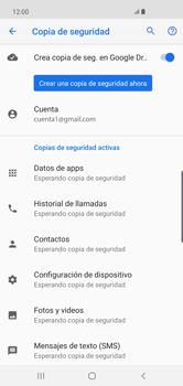 Realiza una copia de seguridad con tu cuenta - Samsung S10+ - Passo 11