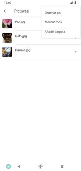 Transferir datos desde tu dispositivo a la tarjeta SD - Motorola Moto G8 Plus (Dual SIM) - Passo 6