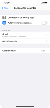 Desactivar la sincronización automática - Apple iPhone 11 - Passo 4