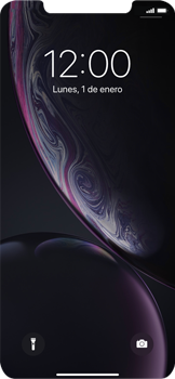Bloqueo de la pantalla - Apple iPhone XR - Passo 6
