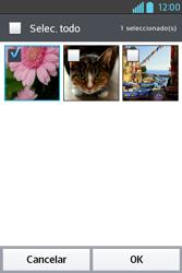 Envía fotos, videos y audio por mensaje de texto - LG L4 II - Passo 15