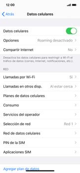 Activa o desactiva el roaming de datos - Apple iPhone 11 Pro - Passo 4
