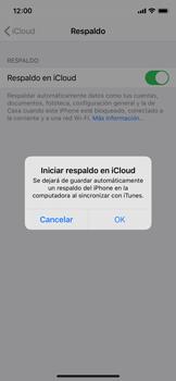 Realiza una copia de seguridad con tu cuenta - Apple iPhone XS - Passo 11