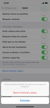 Limpieza de explorador - Apple iPhone XS Max - Passo 5