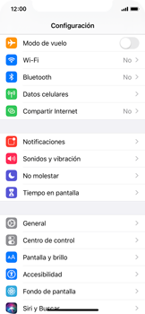 Verificar el uso de datos por apps - Apple iPhone XS - Passo 4