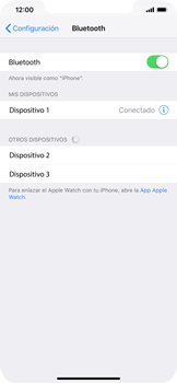 Conecta con otro dispositivo Bluetooth - Apple iPhone XR - Passo 6