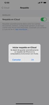 Realiza una copia de seguridad con tu cuenta - Apple iPhone 11 - Passo 11