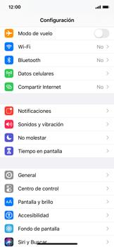 Configurar el equipo para navegar en modo de red LTE - Apple iPhone XS - Passo 2