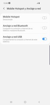 Comparte la conexión de datos con una PC - Samsung S10+ - Passo 9