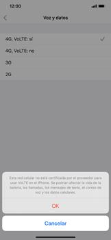Configurar el equipo para navegar en modo de red LTE - Apple iPhone 11 - Passo 6